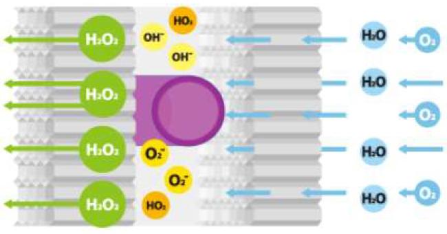 NCC異種光触媒の仕組み