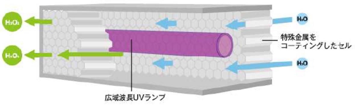 NCCセルの構造図版